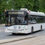 Autobusy elektryczne w Toruniu. Już wiadomo, na których liniach mają jeździć